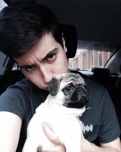 Pugs, pug andmon